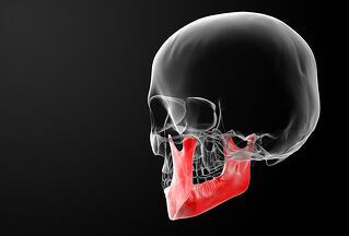 bigstock-jaw-bone-67394899